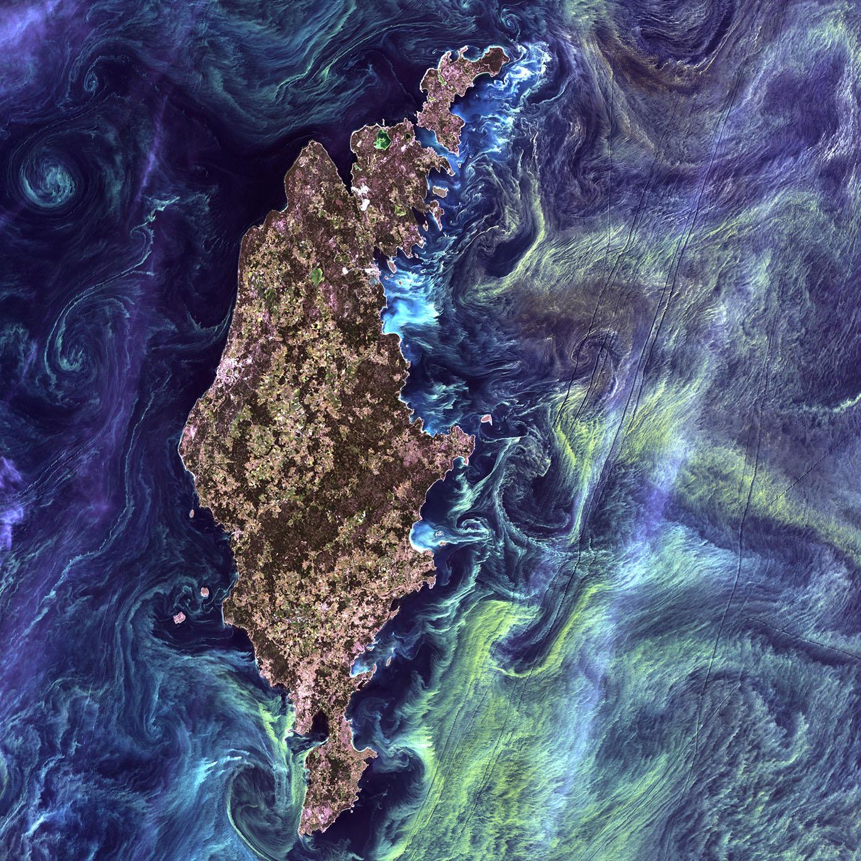SatellitePlankton