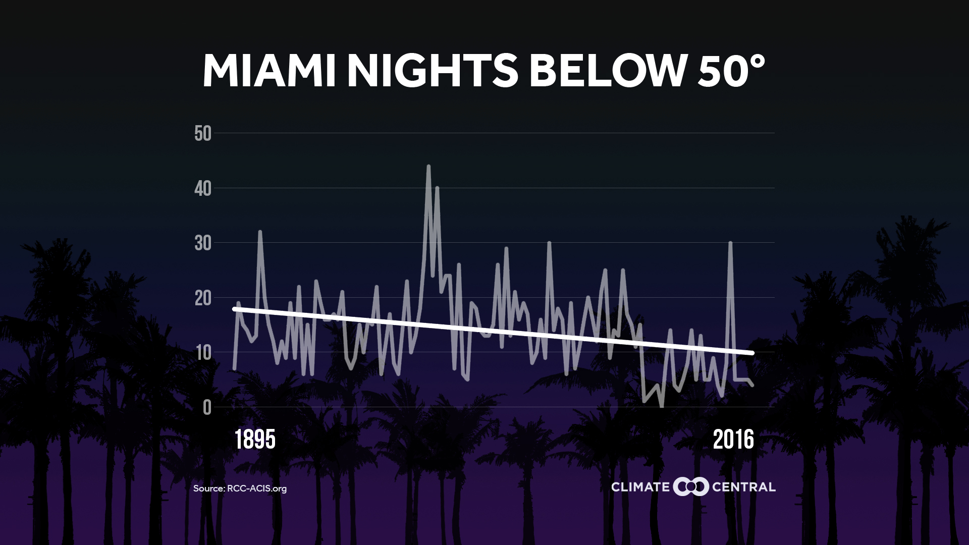 miami nights under 50
