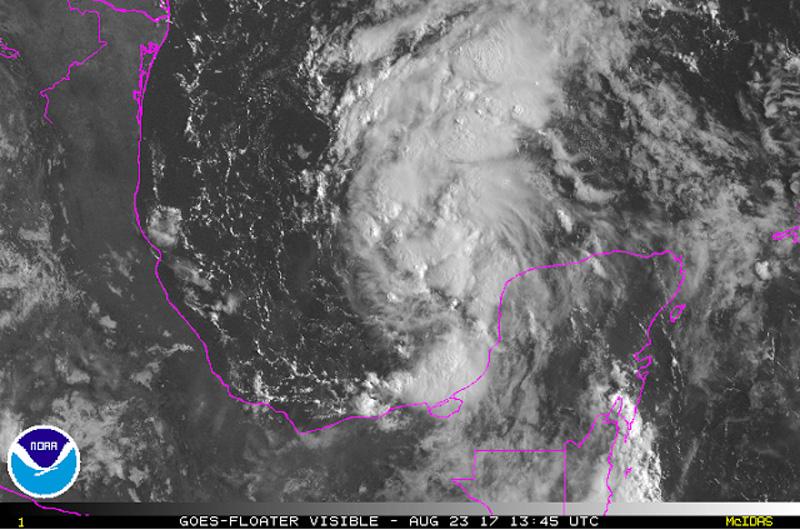 tropical depression harvey