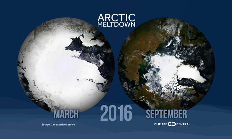 arctic sea ice decline in 2016