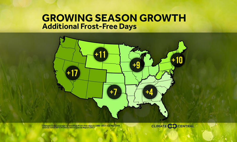 Longer frost-free seasons mean longer allergy seasons