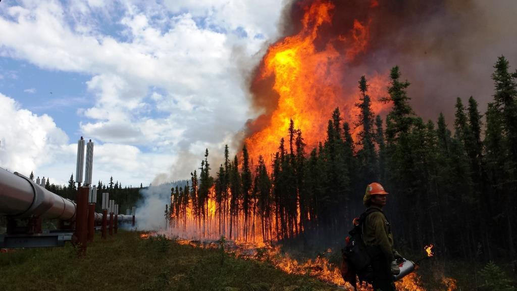 Aggie Creek Fire, June 2015