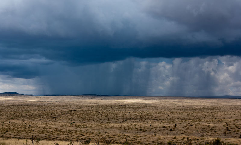 Rain Shower in the Big Bend area