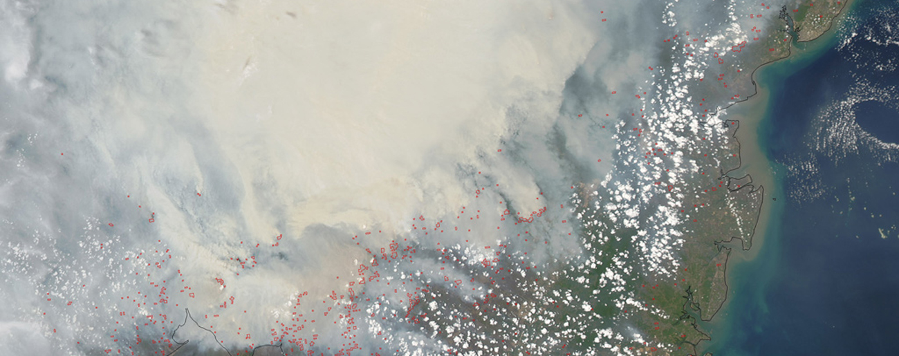 Indonesia's Fires Are Driving Climate, Public Health Crises