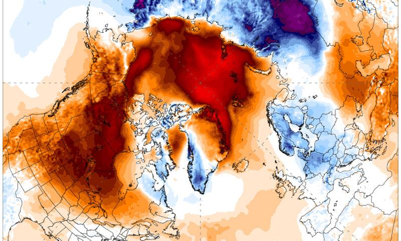 arctic heat