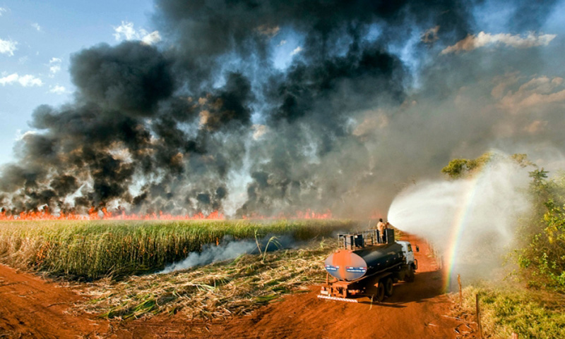 Wildfires set to clear fields in the Amazon
