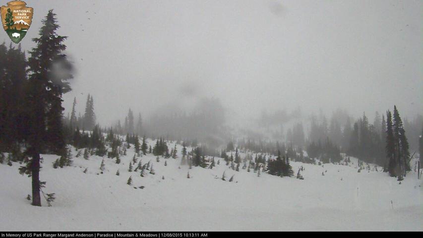 Mount Rainier webcam