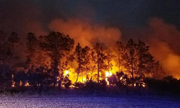 Cowbell fire in Florida