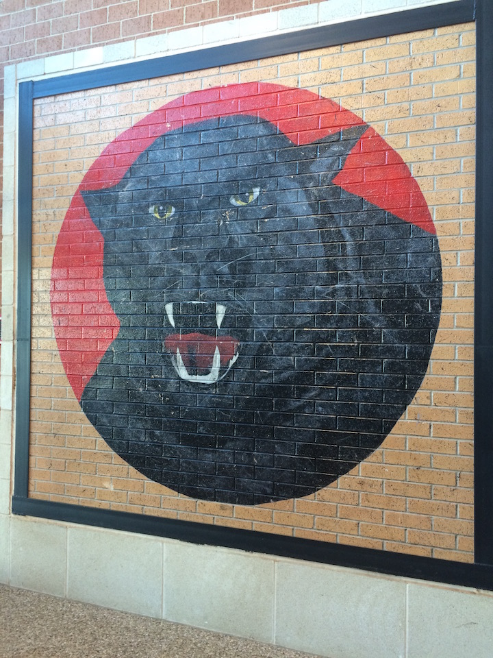 Plaza Towers Elementary panther mural