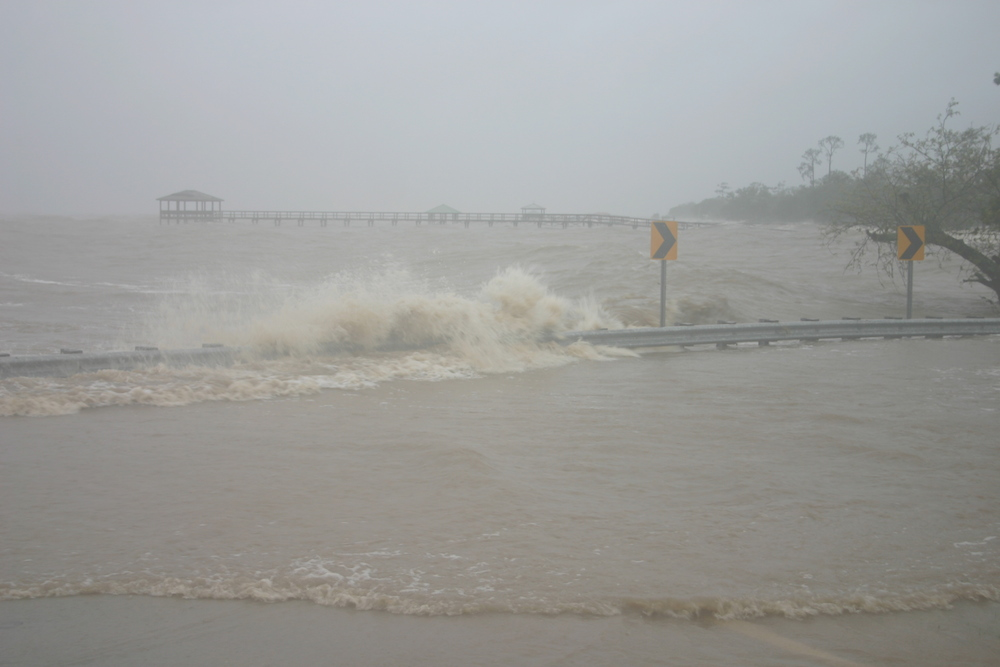 Storm Surge Waves from Isaac