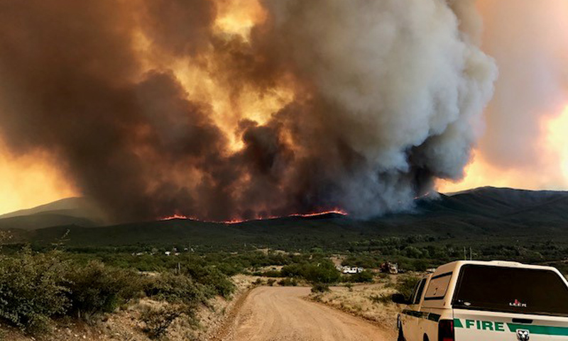forest fire in arizona