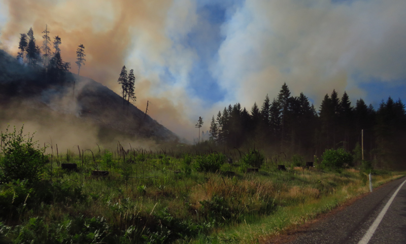 wildfire in washington