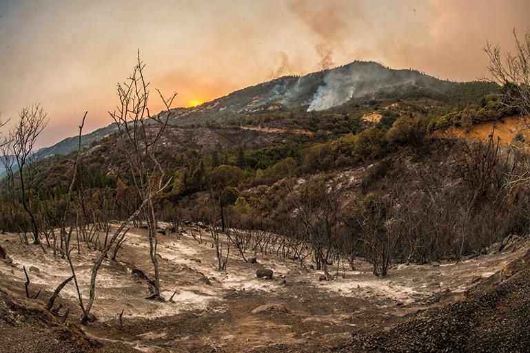 Cedar Fire California